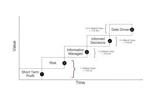 Anmut Data Maturity Ladder