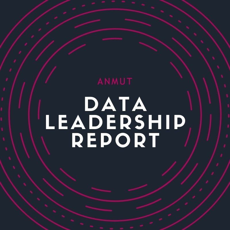 anmut data leadership report